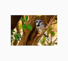 Blue Jay in Shrub - Ottawa, Ontario Unisex T-Shirt