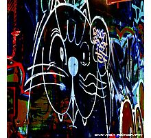 Melbourne Street Art - Kaatz Photographic Print