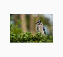 Blue Jay in Spruce Tree - Ottawa, Ontario Unisex T-Shirt