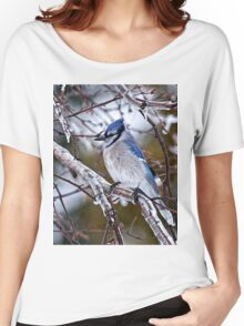 Blue Jay on Ice Covered Branch - Ottawa, Ontario Women's Relaxed Fit T-Shirt