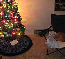 Christmas Cat Nap by Sarah Trent