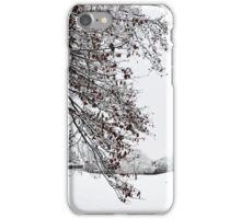 Beautiful White Snow iPhone Case/Skin