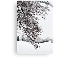 Beautiful White Snow Canvas Print