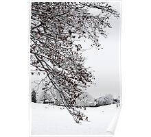 Beautiful White Snow Poster