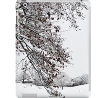 Beautiful White Snow iPad Case/Skin