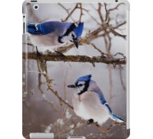 Blue Jays - Shirley's Bay, Ottawa iPad Case/Skin