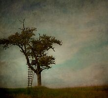 The Ladder by rosedew
