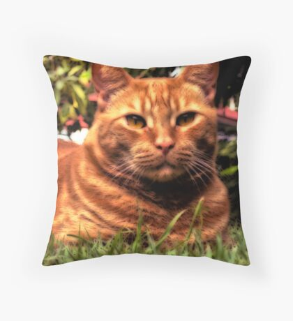 Missianah #1 Throw Pillow
