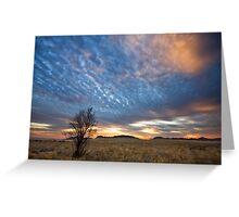 Tamarisk Tree Greeting Card