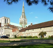 Chichester Cathedral and Grounds. by Brian220