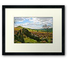 Hawnby Moor #4 Framed Print