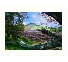 Hawnby Moor #7 Art Print