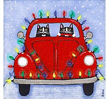 Festive Lights Red Bug Photographic Print