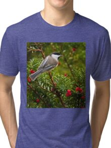 Black Capped Chickadee Tri-blend T-Shirt