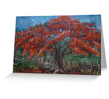 Flambouyant - brightening up the grey and lightening our spirits Greeting Card