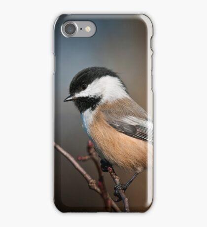 Black Capped Chickadee iPhone Case/Skin