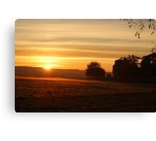 Stray sunrise Canvas Print