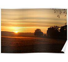 Stray sunrise Poster