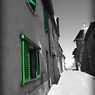 Green Shutters by Luke Griffin