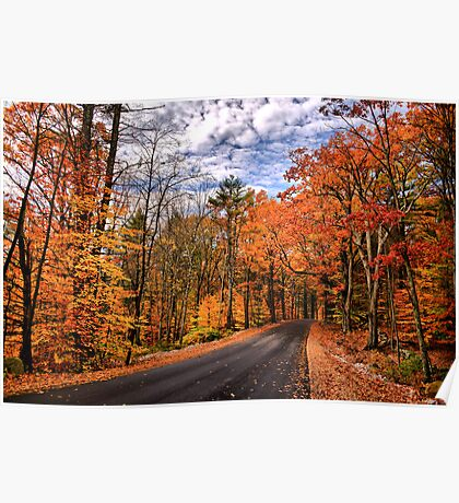 NH Autumn Road 4 Poster