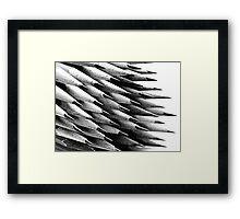 Pencil Points Framed Print