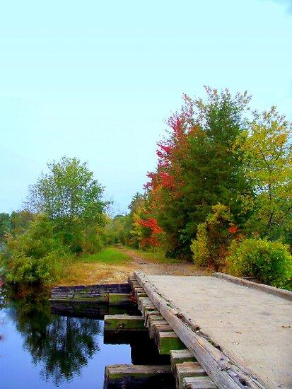 Over the Bridge & Through the  Woods  by Rick  Todaro