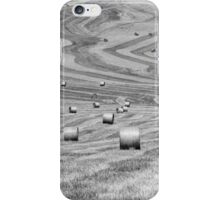 hay cutting patterns, Monticchiello, Tuscany, Italy iPhone Case/Skin