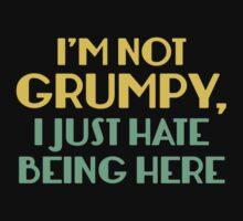 I'm Not Grumpy by AmazingVision