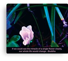 Illuminating Flower Canvas Print