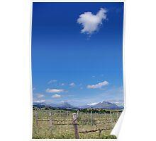 Stunning Stellenbosch Winelands Poster
