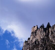 The castle on the mountain by intensivelight