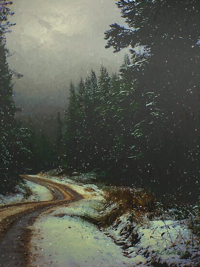 On a Snowy Evening by RC deWinter