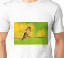Barn Swallow On Barbwire Unisex T-Shirt