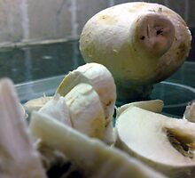 Mummy mushroom looks on forlornly as her family are sliced and diced for dinner...... by MikeShort