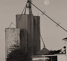 Full Moon On The Farm by Dan9900