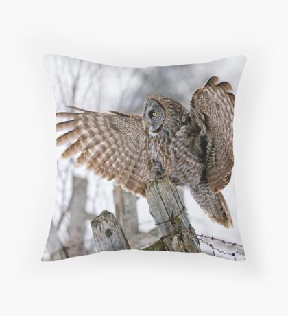 Great Grey Owl - Dunrobin, Ontario Throw Pillow