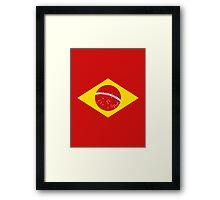 Coutinho Brazil Flag Framed Print