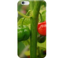 Hot, Hot, Hot! iPhone Case/Skin