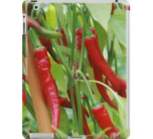 Red hot chilli iPad Case/Skin