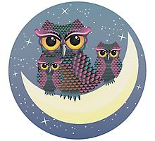 Owls on the Crescent Moon Photographic Print