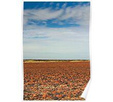 Desert Colours Poster