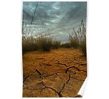 Desert Cracks Poster