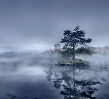 Morning Mist - Tarn Hows by Anna Shaw