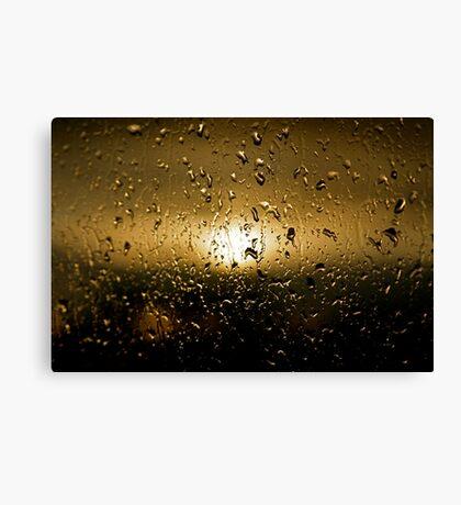 Rainy Day #12 Canvas Print