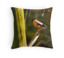 Bullfinch #2 Throw Pillow