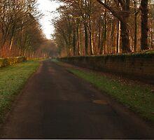 Church Lane, Harewood by WatscapePhoto