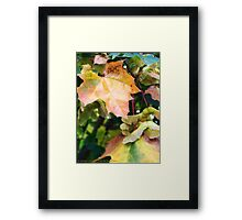 Autumn Farewell Framed Print