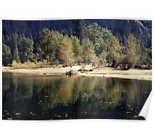 yellow yosemite banks Poster