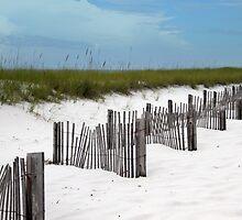Destin Florida Beach by RebeccaBlackman