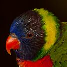 Red beak, yellow garland! by vasu